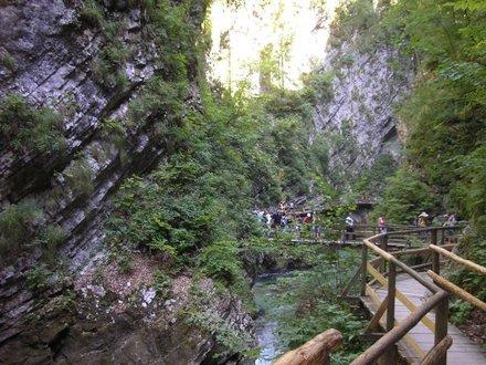 Blejski vintgar, Bled