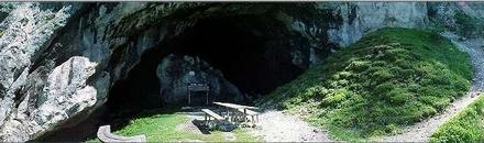 Potočka zijalka, Logarska dolina