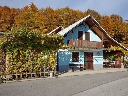 Vineyard cottage Meglič - apartment, Dolenjska