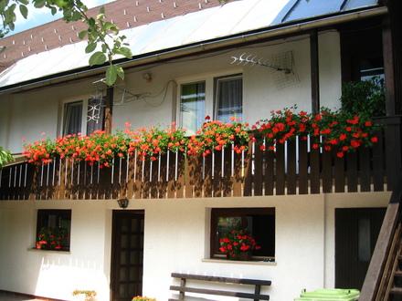 Appartement Snežko, Die Julischen Alpe