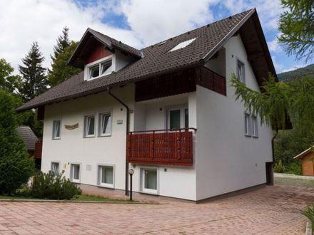 Apartments Bor, Die Julischen Alpe