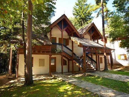 Apartment und Zimmer - Villen Terme Zreče, Maribor und das Pohorjegebirge mit Umgebung