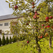 Appartements und Wellness SKOK Mozirje