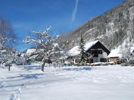 Apartmaji Trata, Julijske Alpe