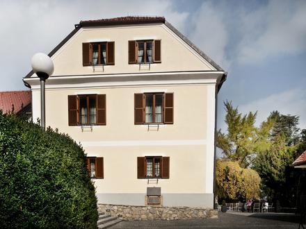 Dvorec Jeruzalem , Maribor in Pohorje z okolico