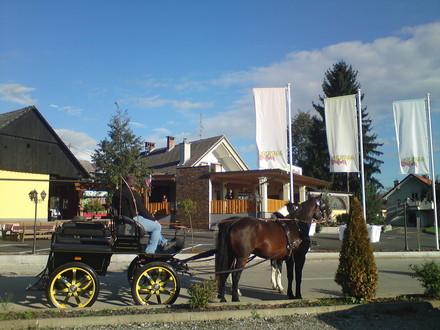 Gostilna Pugelj, Dolenjska