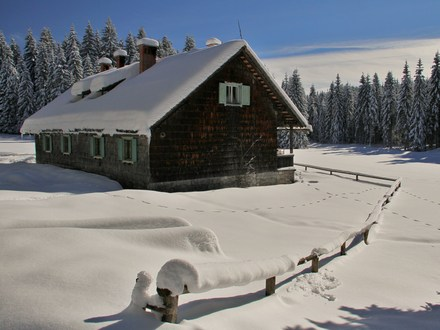 Forest hut Rovtarica, Julian Alps