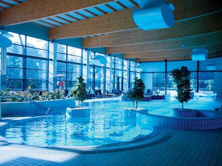 Hotel balnea spa dolenjske toplice dolenjska for Wellness hotel slovenia