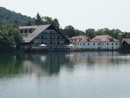 Hotel Alma & Grad Hrib, Alpi Giulie