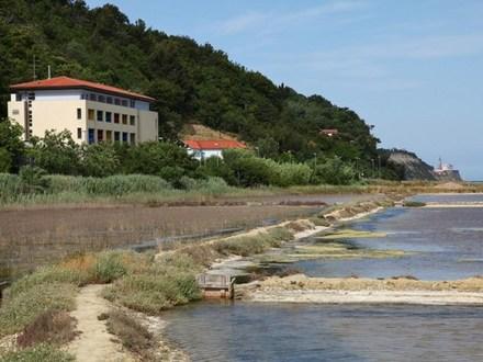 Hotel Oleander, Küste