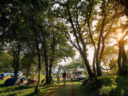 Kamp David, Vipavska dolina