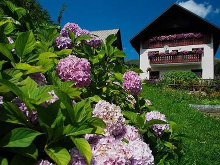 Bauernhoftourismus Betel, Die Julischen Alpe