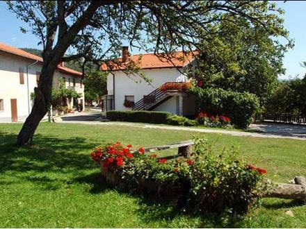 Farm turism Jenezinovi, Ilirska Bistrica