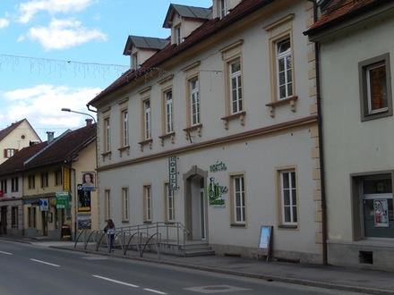 Youth Hotel Marenberg, Maribor und das Pohorjegebirge mit Umgebung