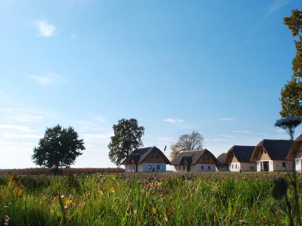 Ferienanlage Panonska vas - Villen und Appartements, Prekmurje