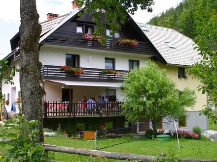 Pension Resje, Die Julischen Alpe