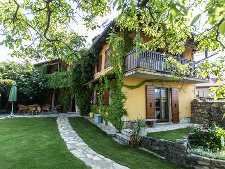 Rozina vacation house, Slovenian coast and Karst