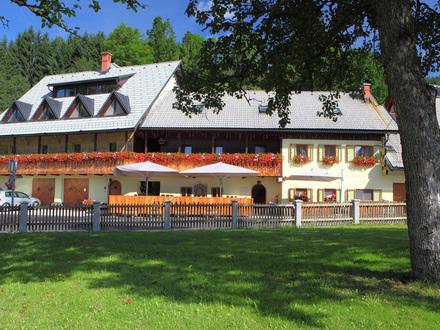 Camere Šurc, Alpi Giulie