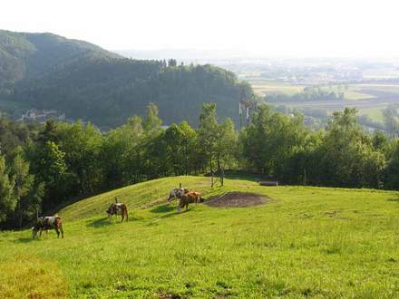 Agriturismo pri Lazarju, Ljubljana e dintorni