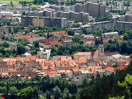 Centro di informazione turistica Kranj – TIC Kranj  , Alpi Giulie