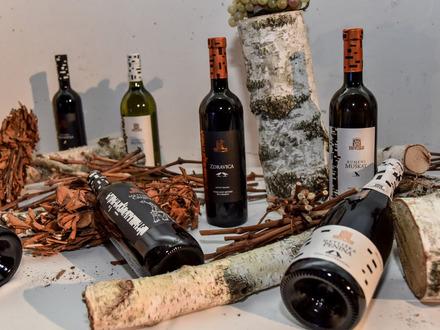 Wine cellar Metlika, Metlika