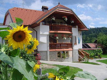 Touristischer Bauernhof mit Appartements Antonija, Die Julischen Alpe