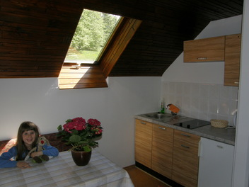 BOOA Camere Irena, Alpi Giulie