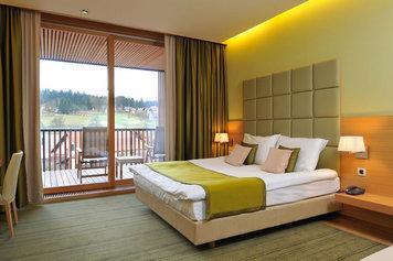 Hotel Balnea -Terme Dolenjske Toplice  , Dolenjska