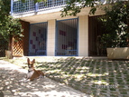 Hotel per cani Kekec, Nova Gorica