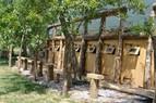 Campeggio Lijak, Nova Gorica, Severna Primorska, Slike so last Kamp Lijaka!